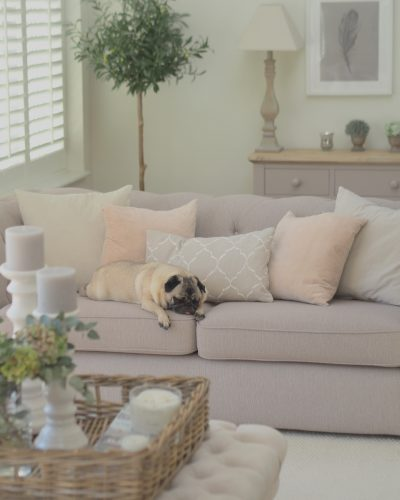 8 Tips For Keeping Your Home Clean With Pets